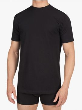Alan Red T-shirt Virginia Regular Fit O-Neck